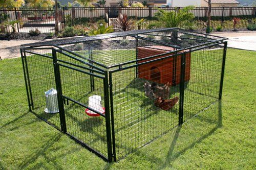 8 Amazing Chicken Coop Plans For Sale Chickens Backyard Chicken Coop Plans Chicken Coop