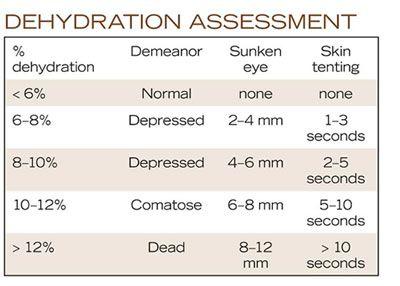 Assess and treat calf diarrhea -- dehydration  sc 1 st  Pinterest & Assess and treat calf diarrhea -- dehydration | Cow Health ...
