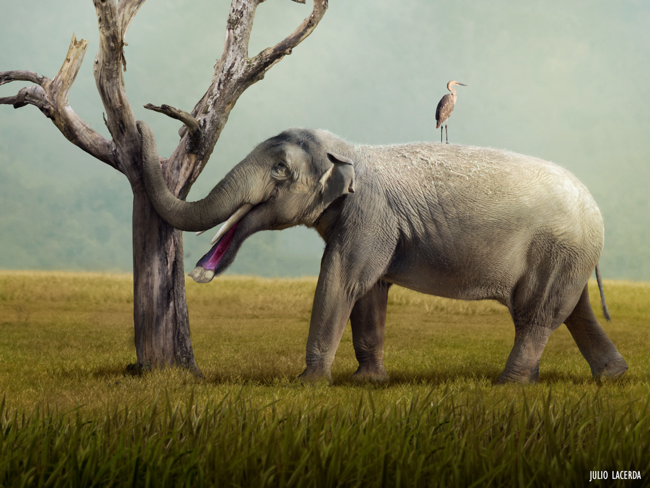 Paleoart New Stu S Suggest The Weird Platybelodon