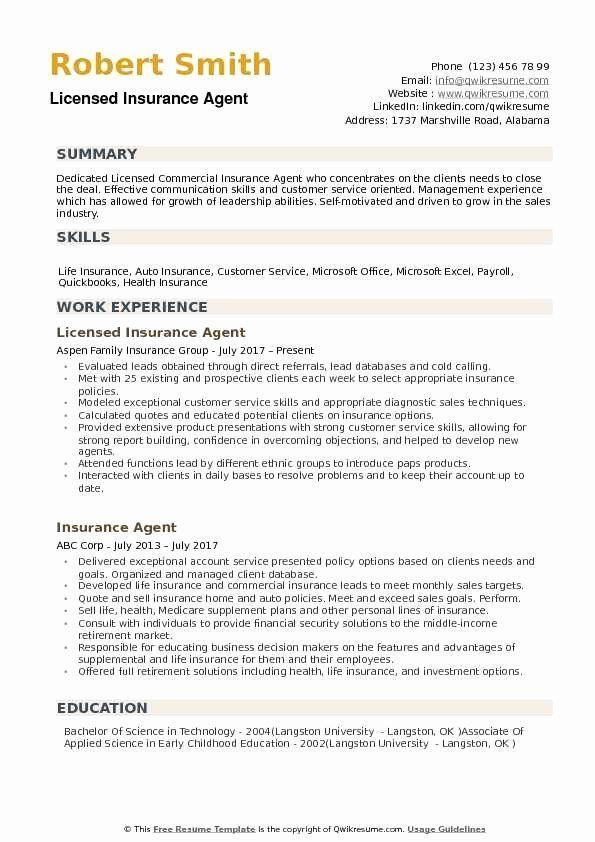 Agent Resume Job Description Awesome Agent Agent Resume Samples I