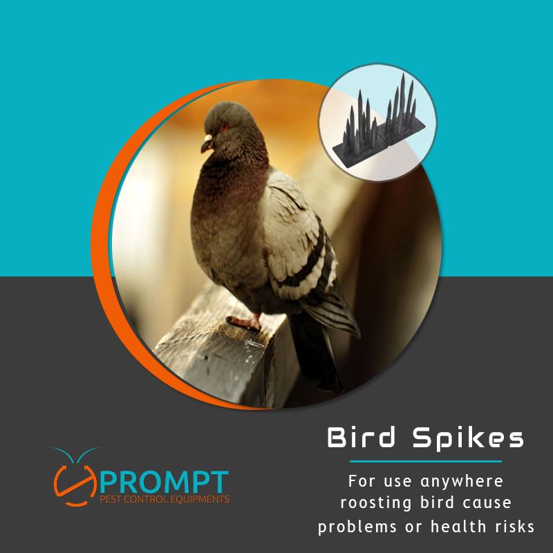 Stainless Steel Bird Spikes Get rid of pigeons, Birds