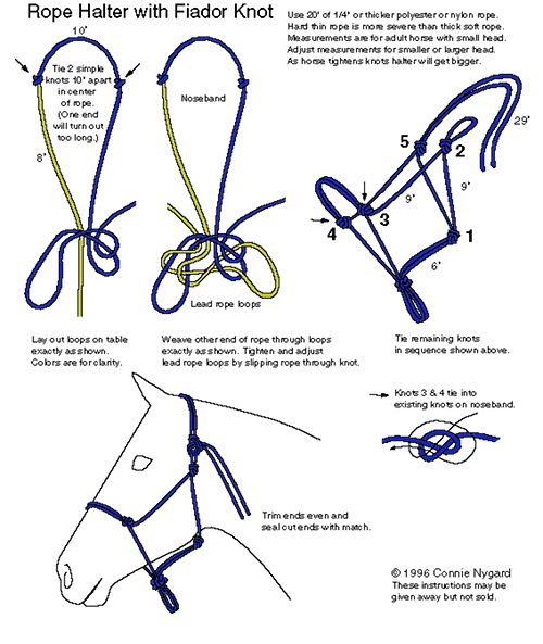 How To Tie A Rope Halter With A Fiador Knot Homestead Tack Horse Halters Rope Halter Horse Tack