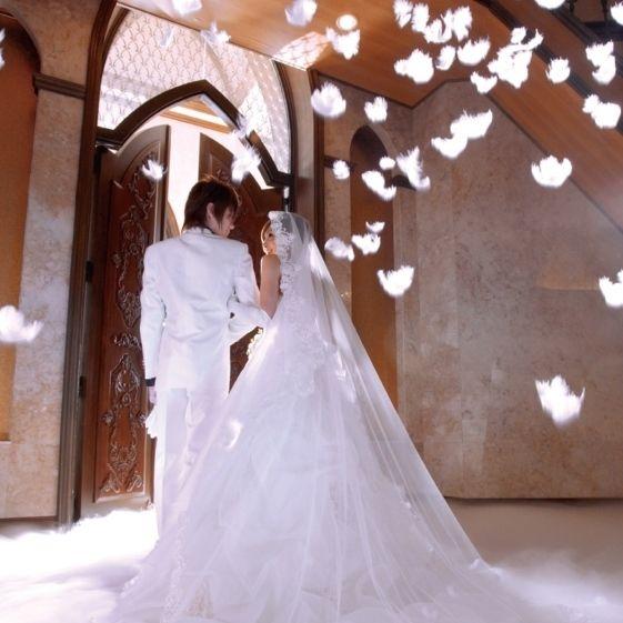 羽が舞う フェザーシャワーが大人気 結婚式 アイデア 結婚式 チャペル 結婚式 アイディア