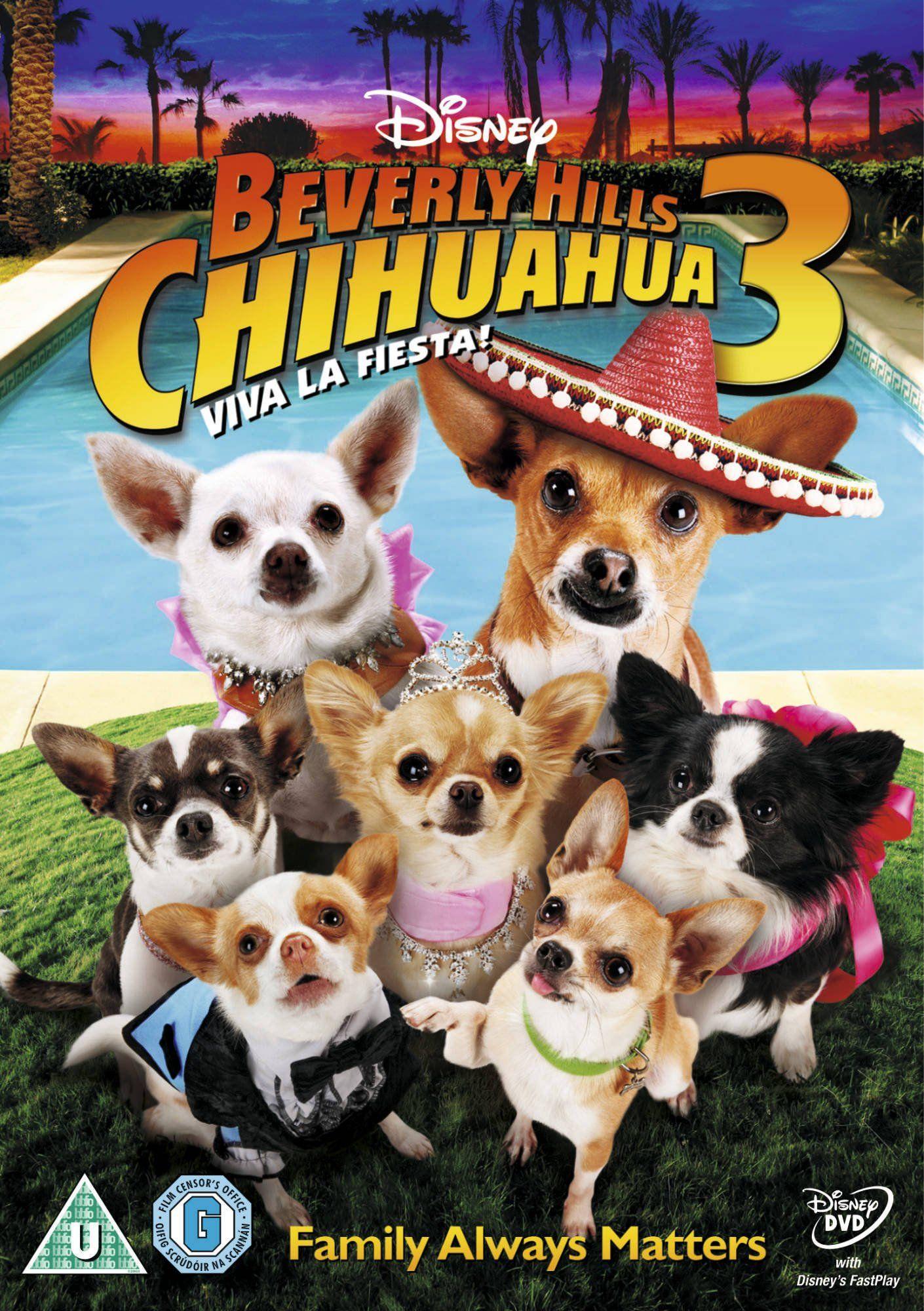 Beverly Hills Chihuahua 3 Reino Unido Dvd Chihuahua Hills