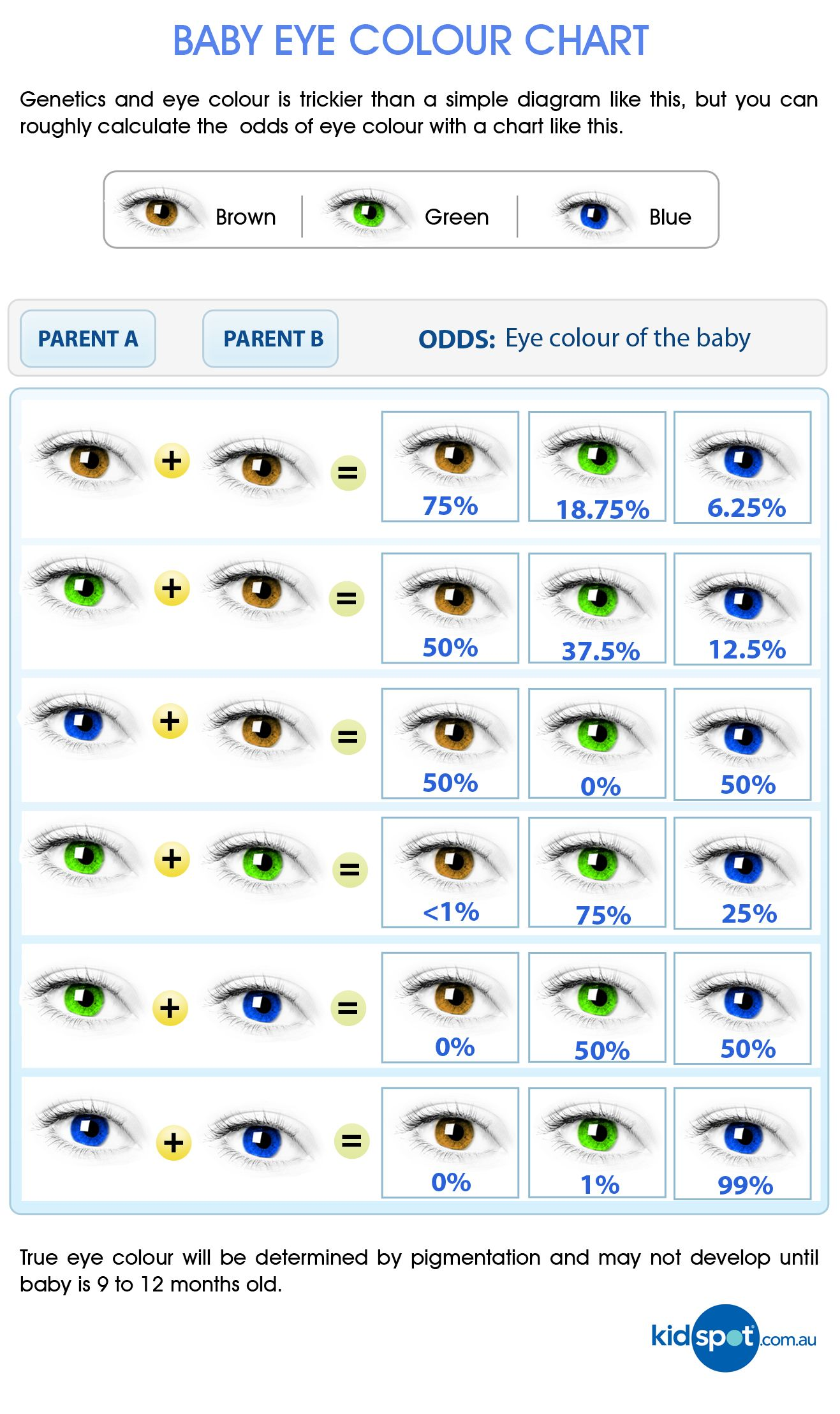 The eyes have it all about your babys eyes and how they develop predict your babys eye colour with this handy chart and check out our comprehensive guide to nvjuhfo Image collections