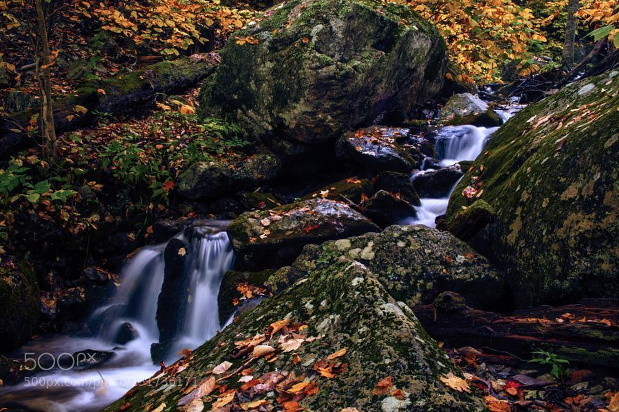 A Small Falls on the Blueridge - Pinned by Mak Khalaf A shot of a small waterfall some where along the Blueridge Parkway with great fall color everywhere. Nature Virginiaautumnbeautifulbluefallforestgreenleaveslightrockswater by gjim9beam #blueridgeparkway A Small Falls on the Blueridge - Pinned by Mak Khalaf A shot of a small waterfall some where along the Blueridge Parkway with great fall color everywhere. Nature Virginiaautumnbeautifulbluefallforestgreenleaveslightrockswater by gjim9beam #blu #blueridgeparkway
