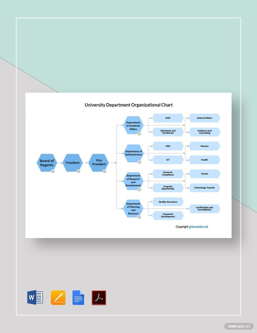 Free University Department Organizational Chart In 2020