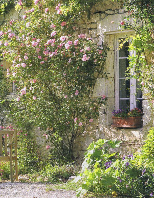 climbing roses gartenidylle pinterest bauerngarten fenster und t ren und mein garten. Black Bedroom Furniture Sets. Home Design Ideas
