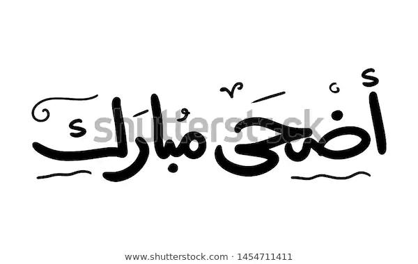 Eid Mubarak Aid Said Beautiful Islamic Stock Vector Royalty Free 1454711411 Happy Eid Eidmubarak Eidcollection Abstract Images Stock Photos Typography