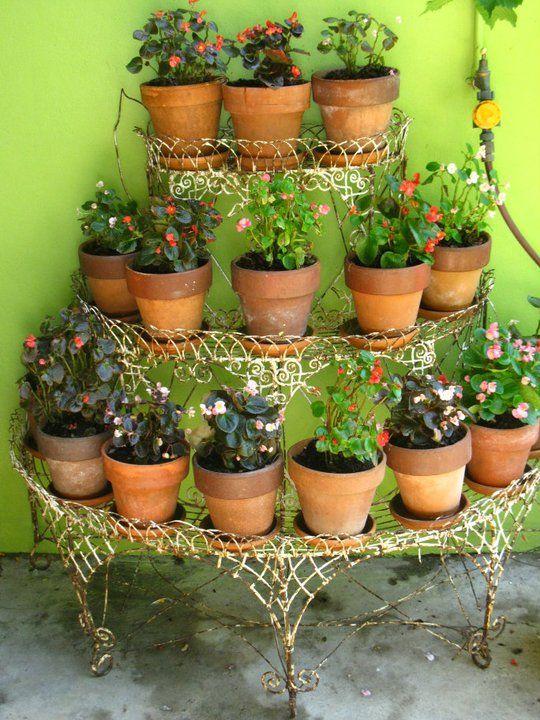 My Victorian Garden Wire With Begonias
