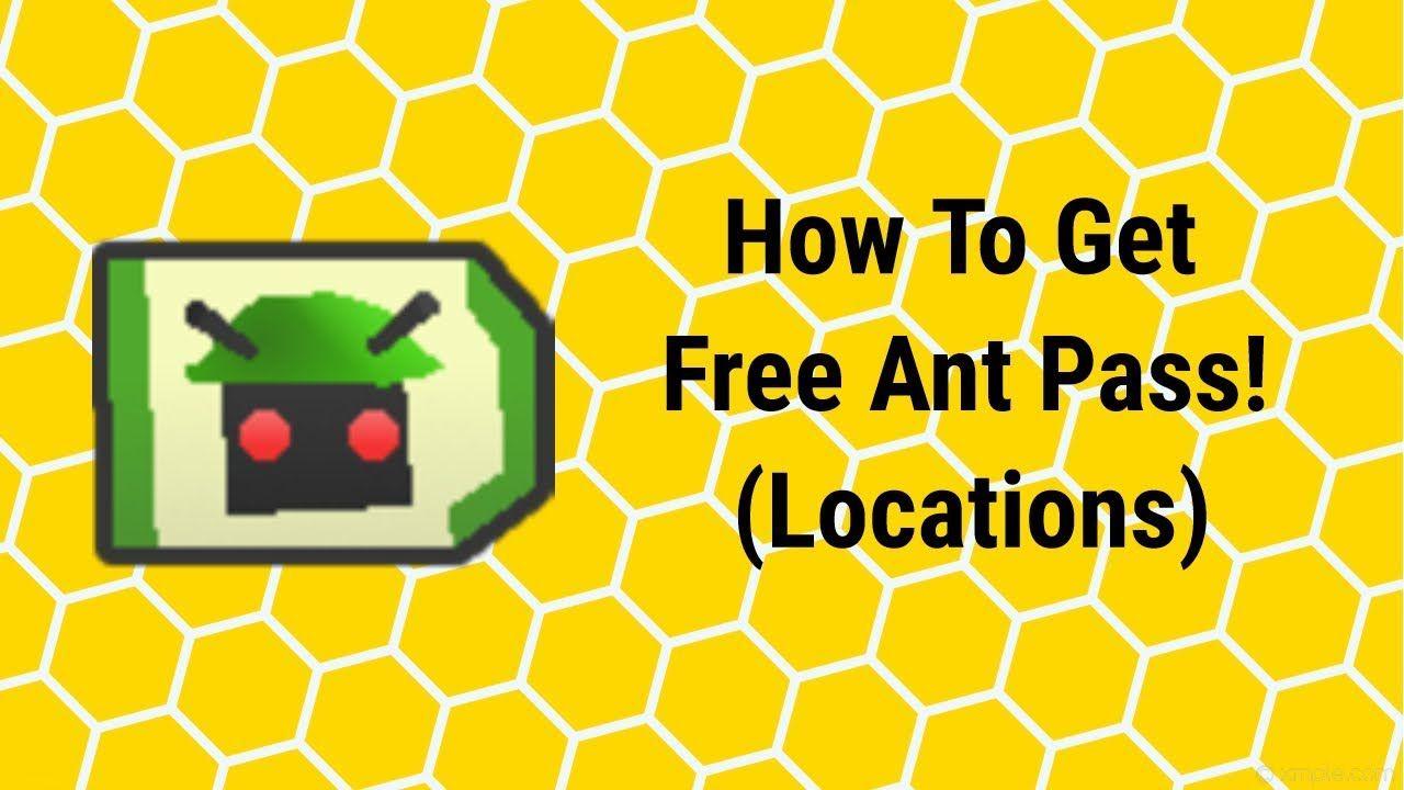 Secret Ant Pass Locations Not Clickbait Roblox Bee Swarm