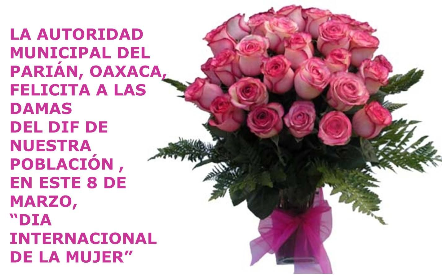 Felicitaciones a las mujeres de paran oaxaca cosas increbles explore rose flowers pink roses and more izmirmasajfo