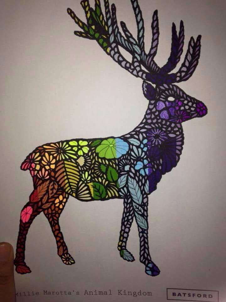 Coloring Ideas Deer BooksAdult ColoringAnimal KingdomDeerCrayon
