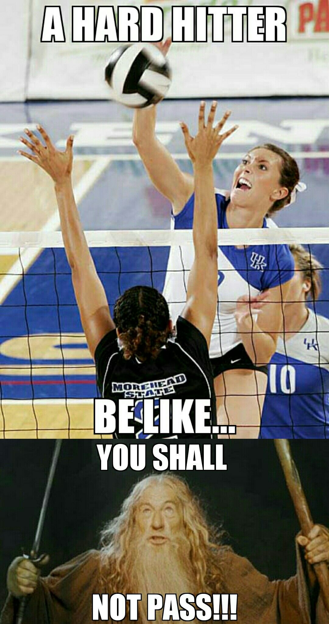 You Know You Re A Volleyball Player When Volleyball Humor Volleyball Memes Volleyball Inspiration