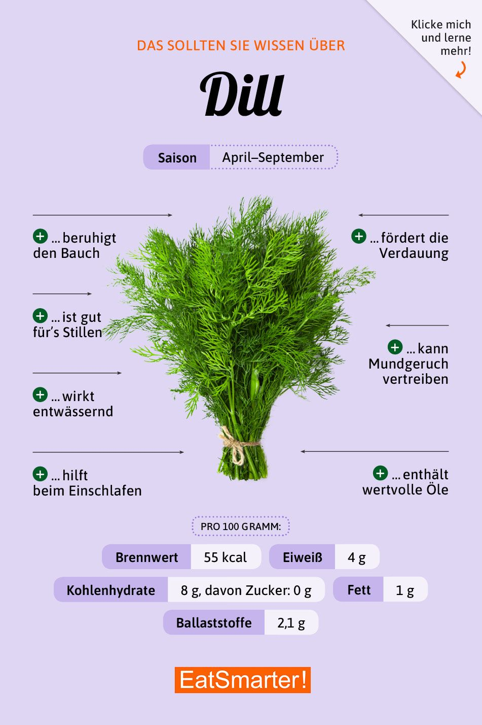 Photo of Dill