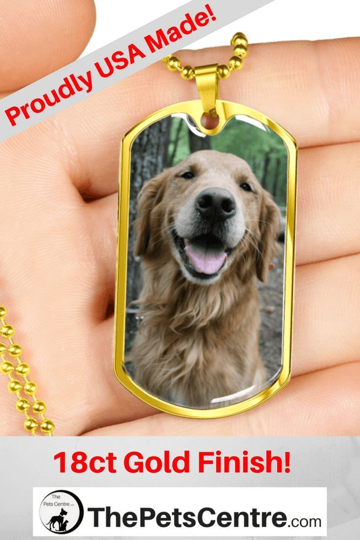 Golden Labrador FREE Shipping This beautifully crafted