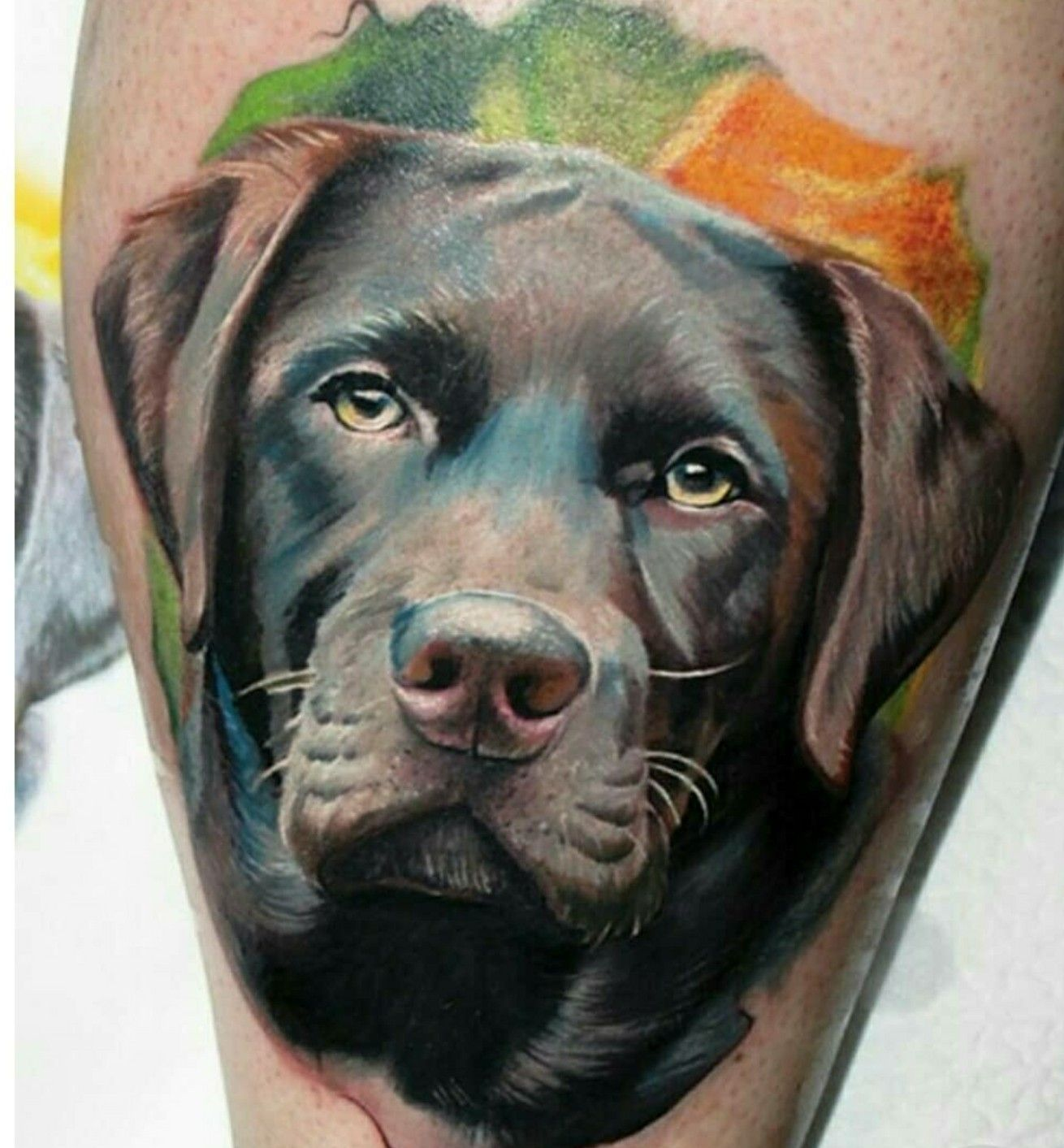 Pin By Brett Anderson On Tattoo Ideas Dog Tattoos Dog Portrait