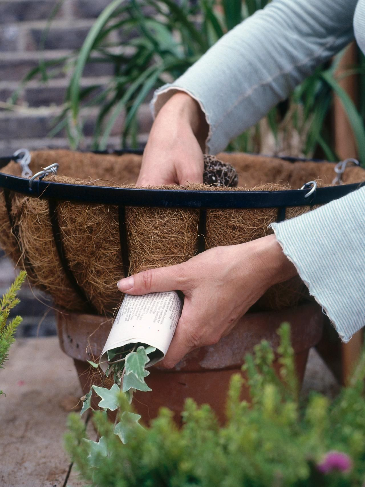 plant a winter hanging basket hardscape design landscaping