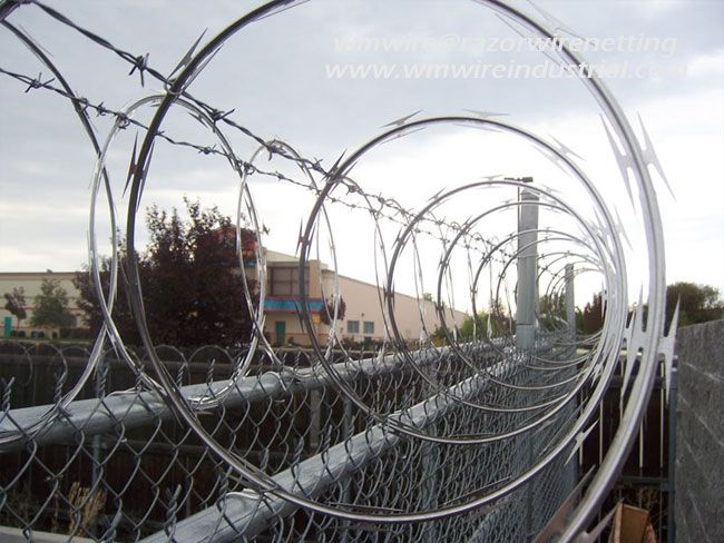 Originally barbed wire fulfilled the roll of perimeter fence ...