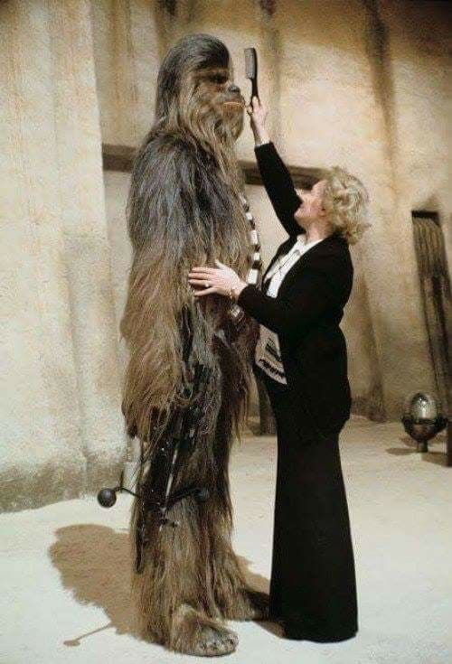 Chewbacca's hair combed by makeup artist Kay Freeborn on the set of Star Wars: Episode IV - A New Hope at Elstree Studios, London.