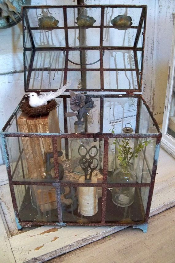 Reserved For J Huge Glass Display Box Observation Showcase Terrarium