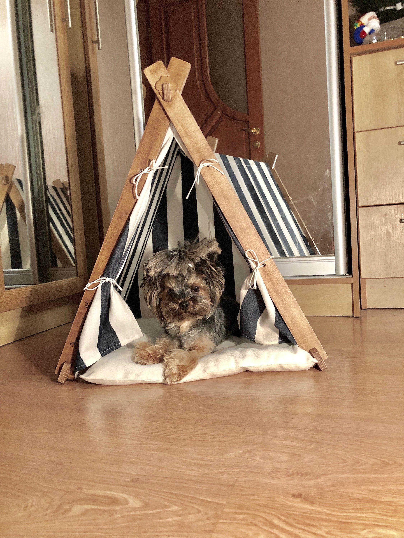 Cat Teepee Dog Teepee Dog Tend Cat tent Pet Teepee Dog
