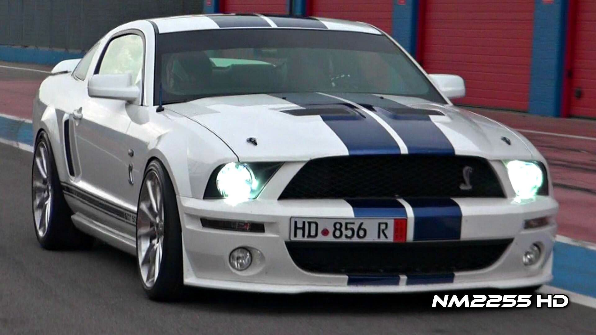 Modified Shelby Mustang GT500 INSANE SOUND on Track