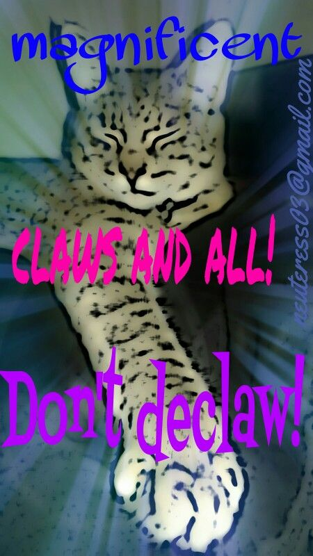 Claws and all!