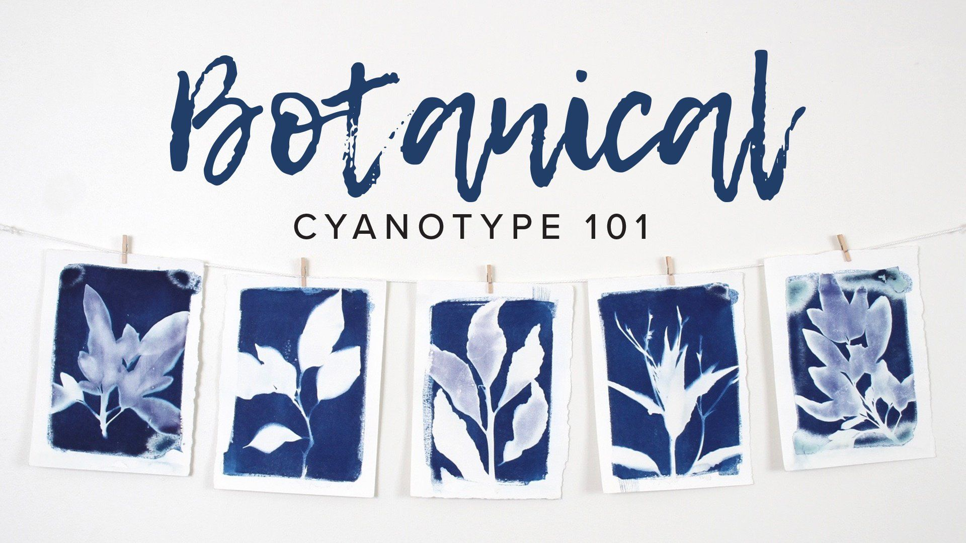 Join Laurie Anne Art to learn to make your own Botanical