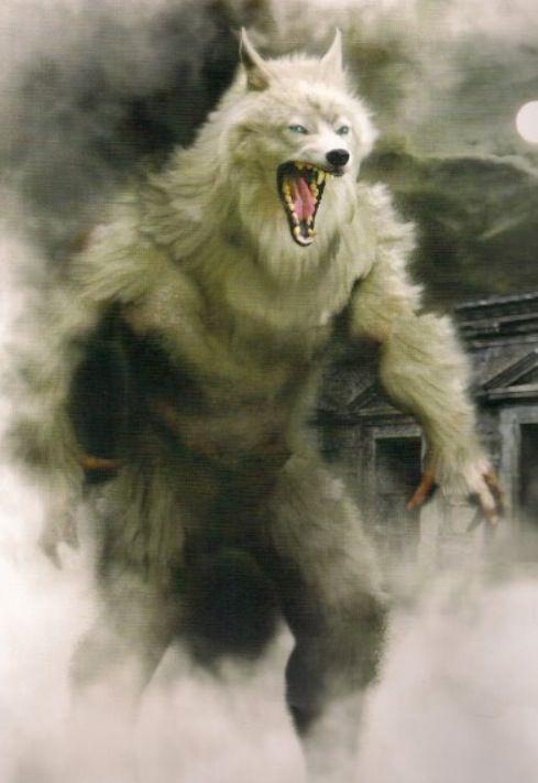 100+ Werewolf ideas in 2021 | werewolf, werewolf art, lycanthrope