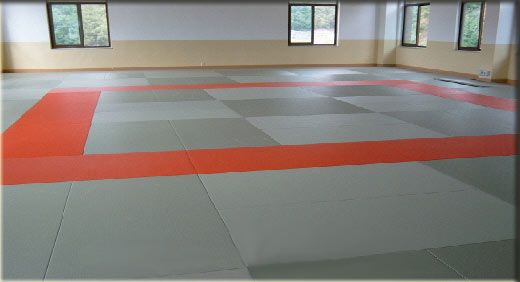 tatami Judo mats | F  Endeavors #1 Dojo | Judo, Tatami mat, Karate