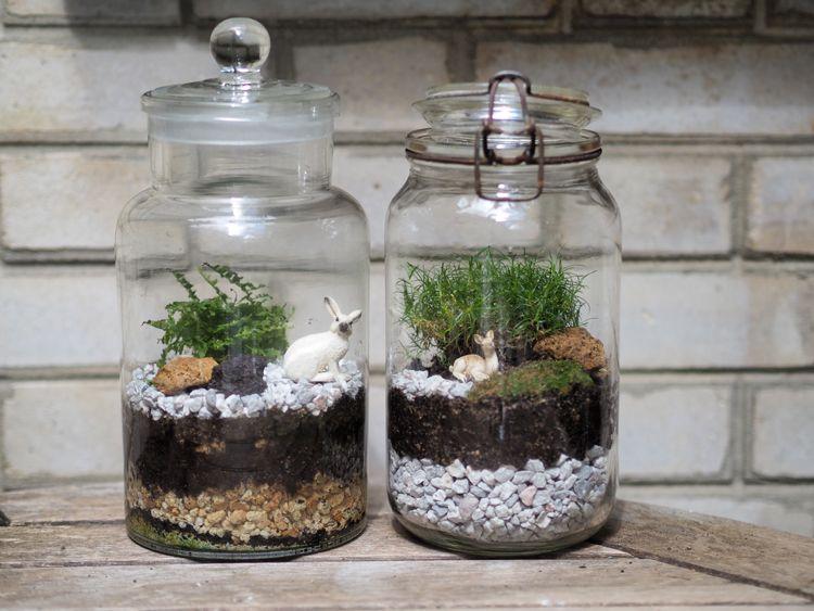 diy comment fabriquer son terrarium diy pinterest terrarium fermer et faut. Black Bedroom Furniture Sets. Home Design Ideas