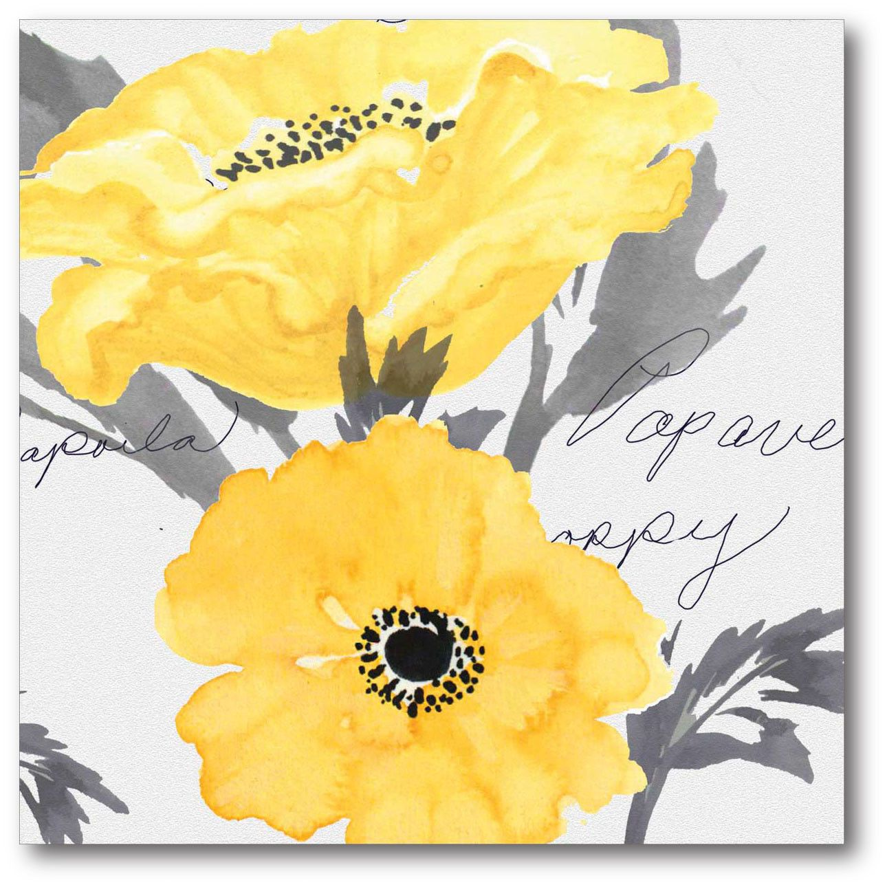 Courtside Market Poppy I Gallery Wrapped Canvas | Furniture | Pinterest