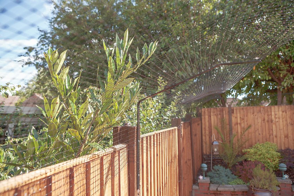 Extra long protectapet brackets cat fence cat enclosure
