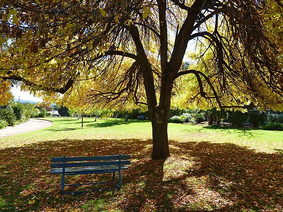 723fbd3975ecf008faba87ba49b153af - City Of Wagga Wagga Botanic Gardens
