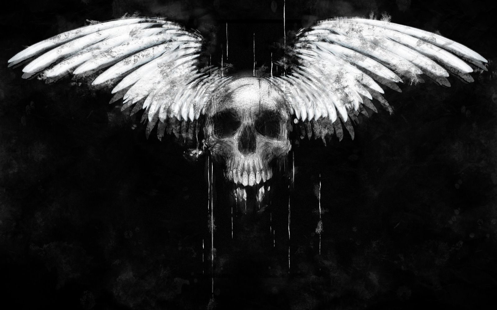 Are you looking for 3D Skull HD Wallpapers? Download