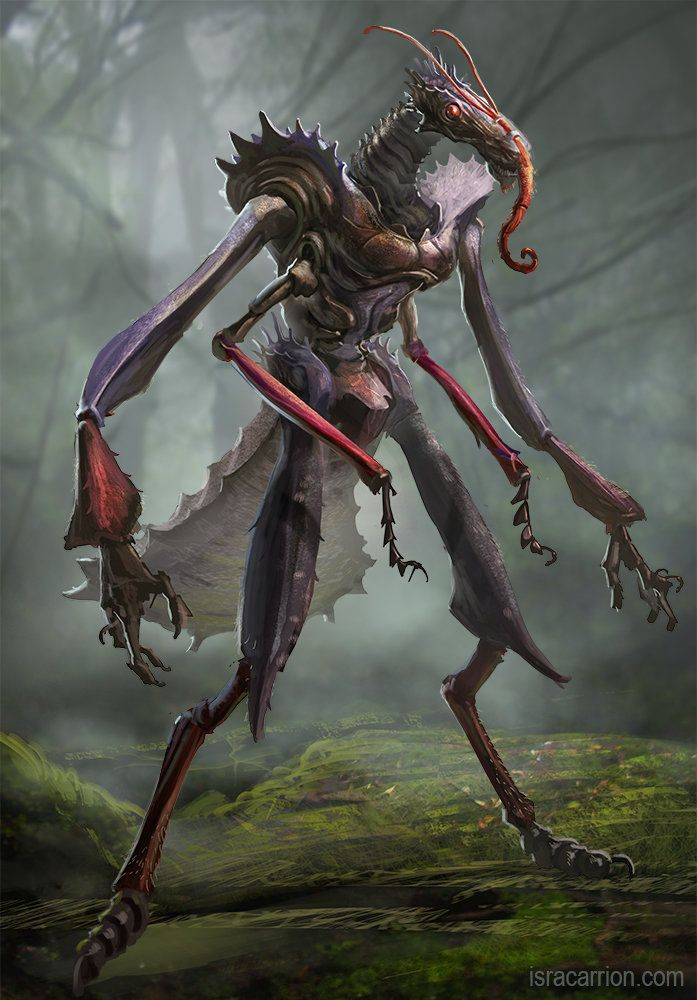 Insect Creature Isra Carrion Creatures Creature Art Creature