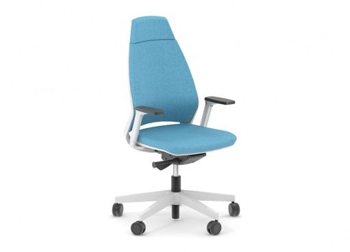 Executive Chairs | Executive chair, Workplace and Executive office ...