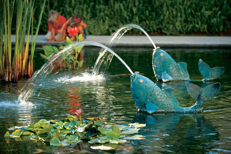 Pin by Lee Morgan on House Beautiful | Ponds backyard, Pond water features, Koi  pond