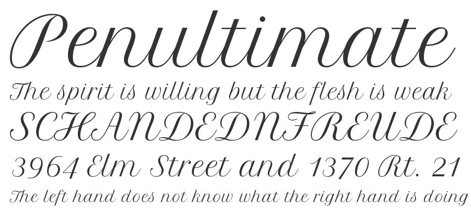 Petit Formal Script font - Google Search