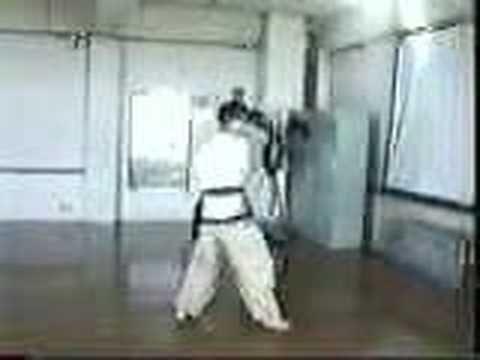 Korean Martial Art Sword Form - OaeGeom - ToYuRyu | Traditional