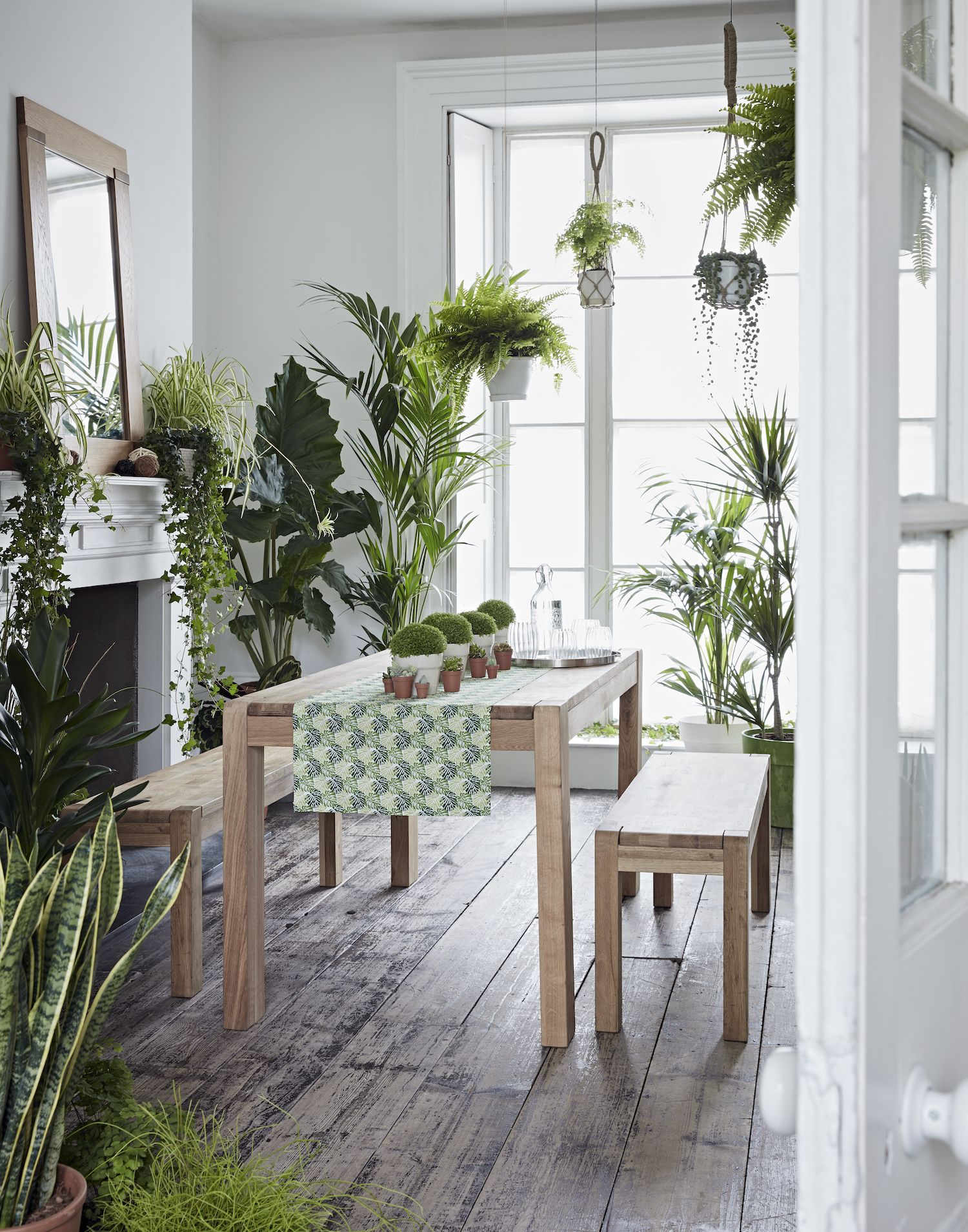 Plant Bench Indoor New Ss17 Collections From Harveys Urban Jungle Dining