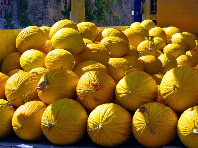 Prevenzione Donna: I meloni d'inverno… ma crescono d'estate !