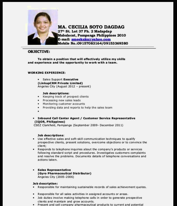 Sample Resume No Experience Call Center