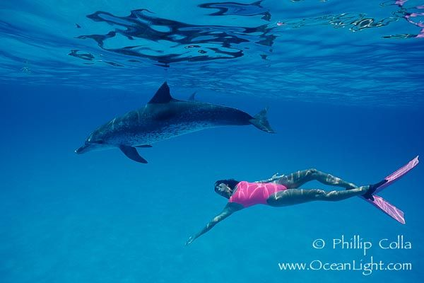 I will go Ocean swimming, good for the body and the soul