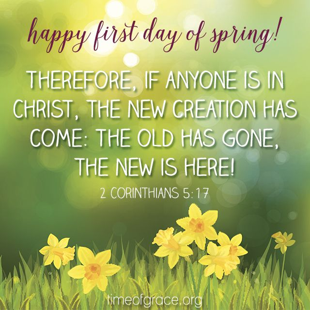 Happy first day of spring! Spring quotes, Happy quotes
