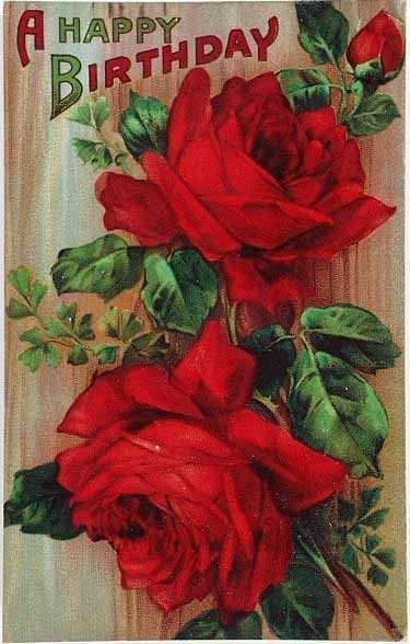 Red Rose Birthday Card From Germany Vintage Birthday Cards