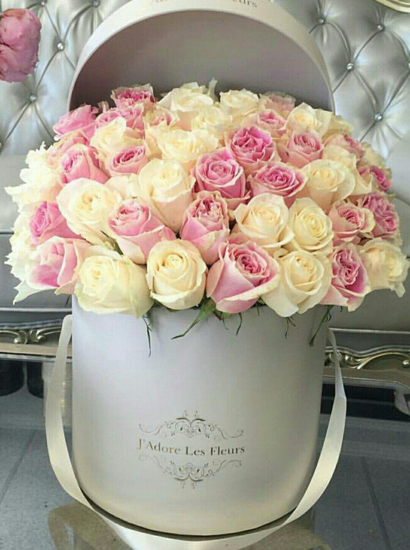 Pin von liza dinata auf flower box 4 pinterest sch ne for Pinterest blumen