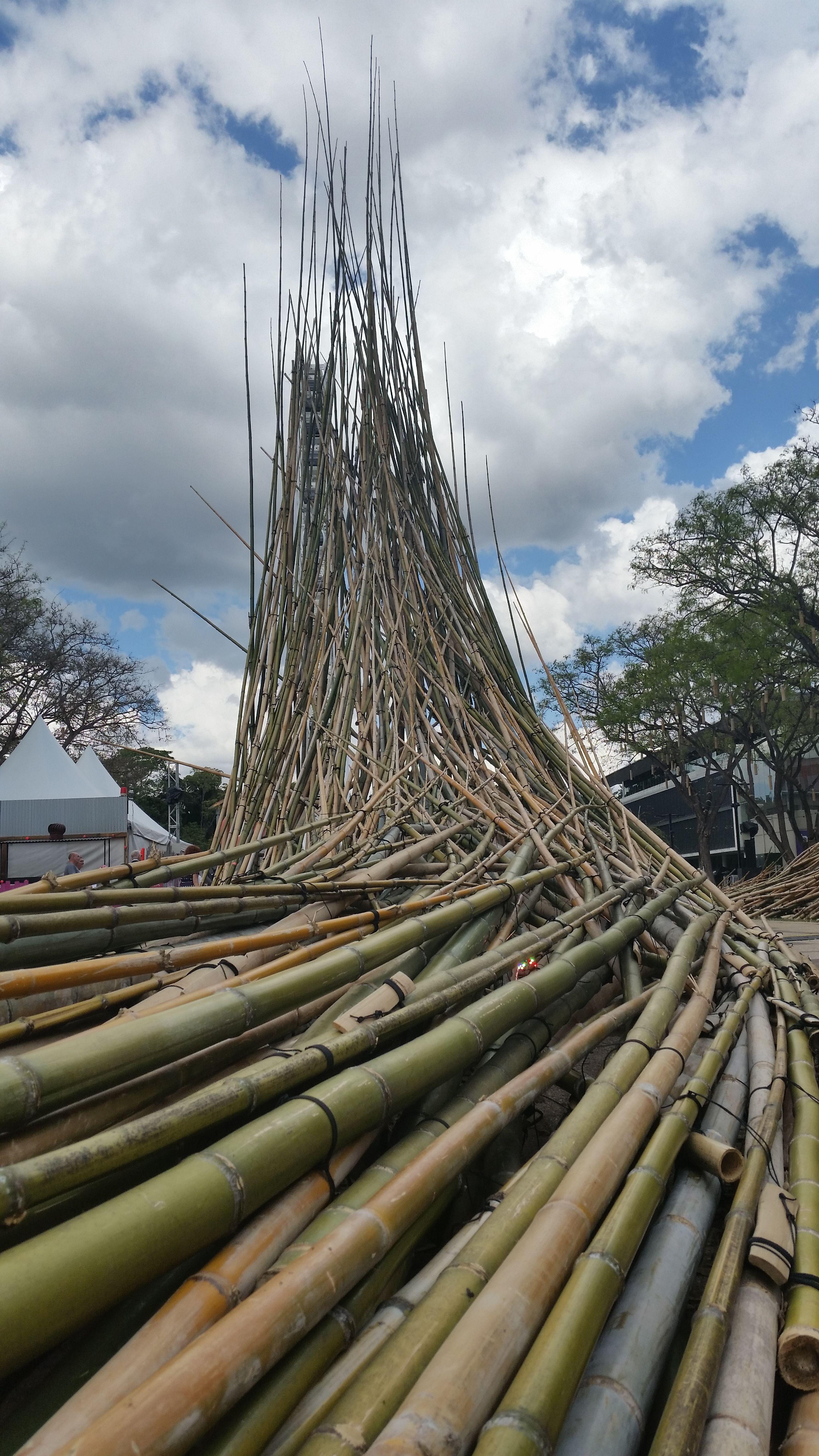 Stunning Bamboo Structure Sculpture In Brisbane Australia