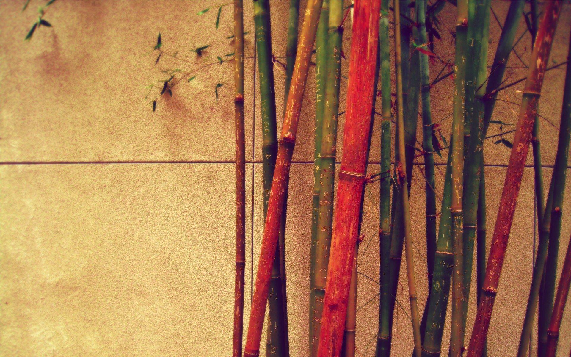 Bamboo Trees Vintage Hd Desktop Wallpaper Background Download Papeles Tapizas De Epoca Wallpapers Vintage Ideas De Fondos De Pantalla